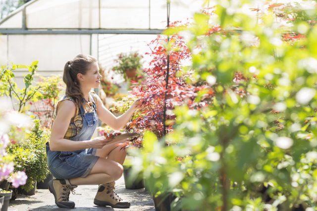 Funky, Fun Garden Plants